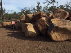 Queensland sandstone Bush Rock